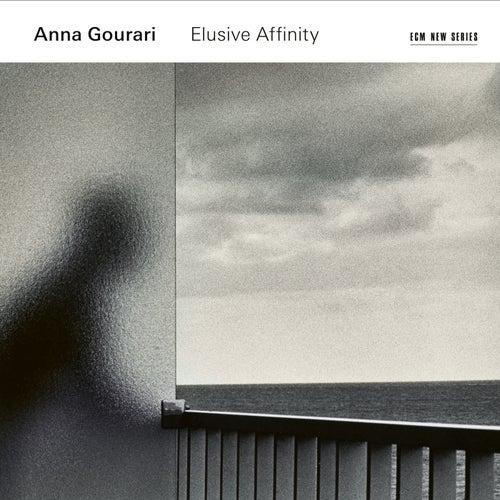 Elusive Affinity de Anna Gourari