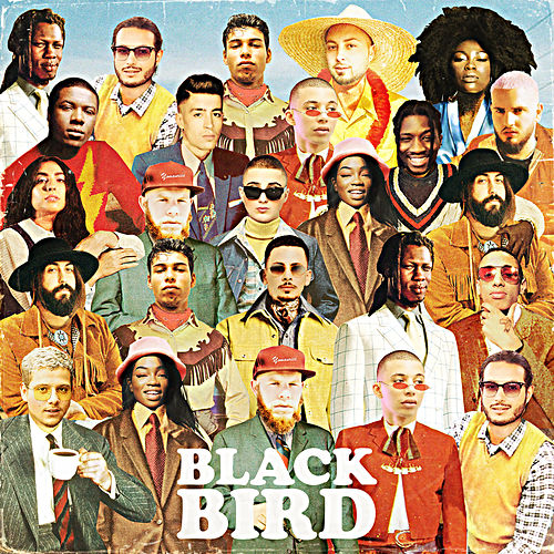 Blackbird by DJ Elite