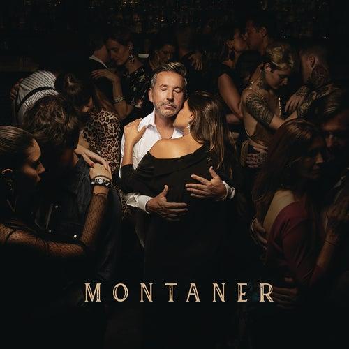 Montaner de Ricardo Montaner