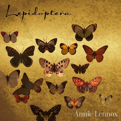 Lepidoptera von Annie Lennox