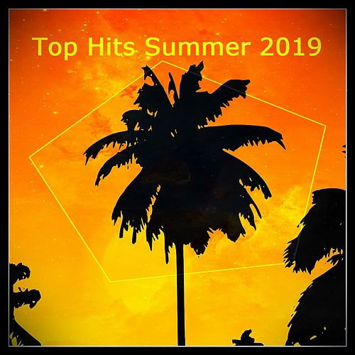 Top Hits Summer 2019 von Various Artists