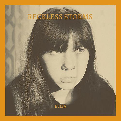 Reckless Storms by Eliza