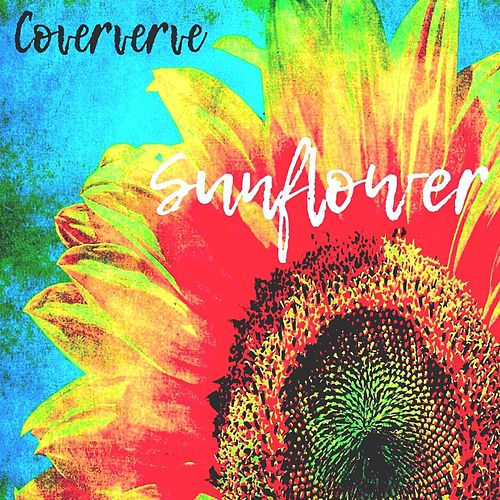 Sunflower de Coververve