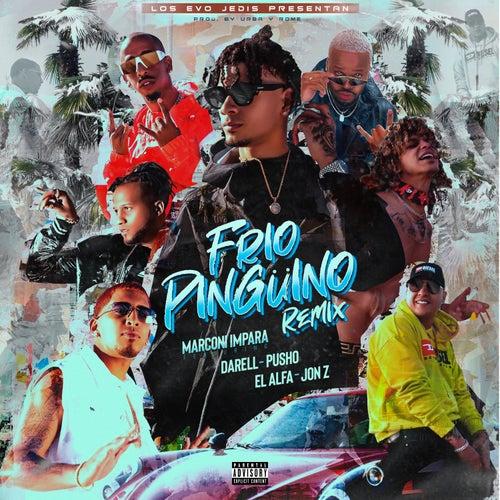 Frio Pingüino (Remix) de Marconi Impara