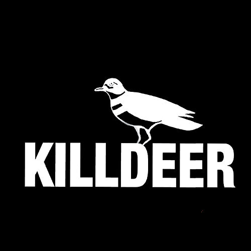 Killdeer von Killdeer