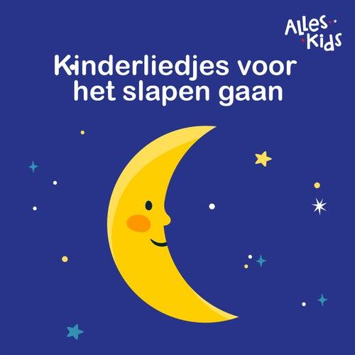 Kinderliedjes voor het slapen gaan von Alles Kids