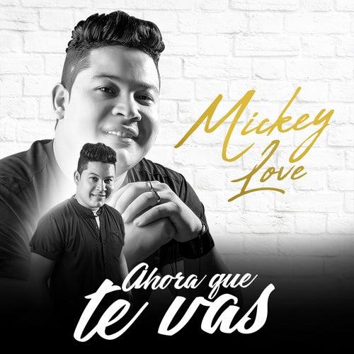 Ahora Que Te Vas von Mickey Love
