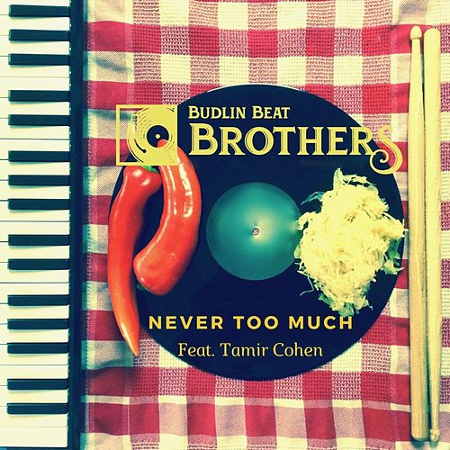 Never Too Much (feat. Tamir Cohen) de Budlin Beat Brothers