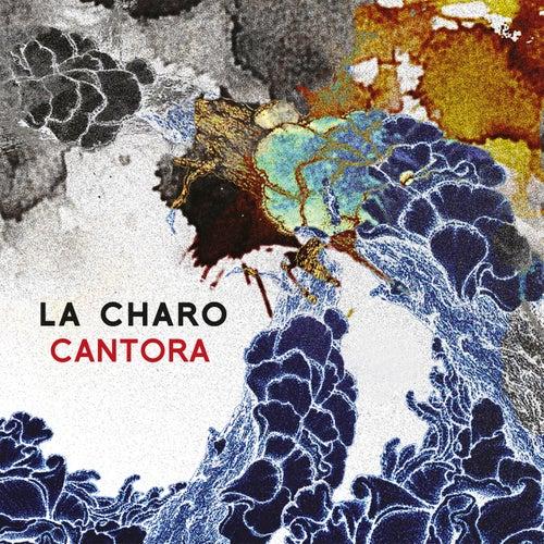 Cantora de Charo