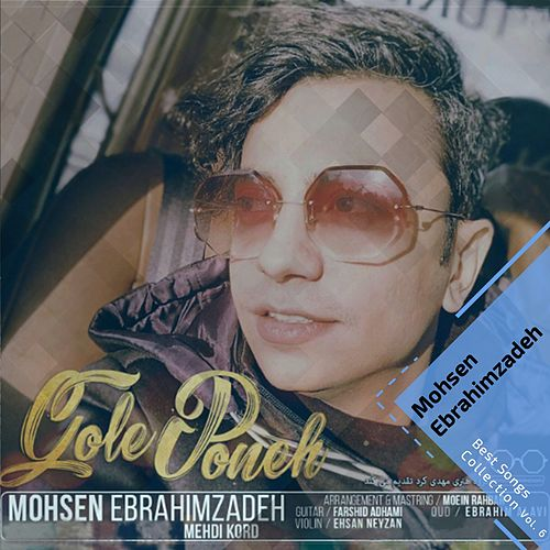 Best Songs Collection, Vol. 6 by Mohsen Ebrahimzadeh