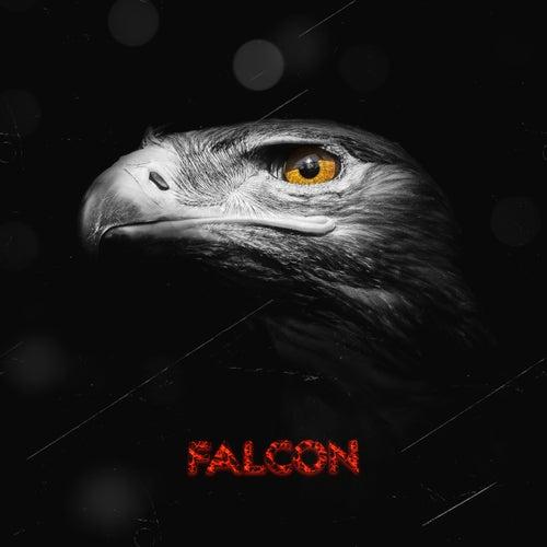 Falcon de Comah