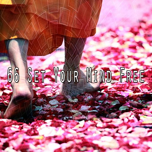 66 Set Your Mind Free de Meditación Música Ambiente