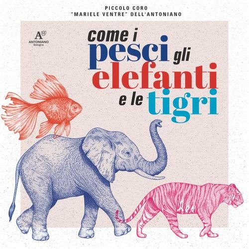 Come i pesci, gli elefanti e le tigri by Piccolo Coro Mariele Ventre Dell'Antoniano