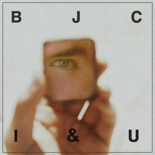 I & U de Brian Justin Crum