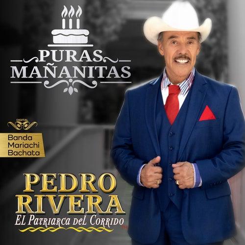 Puras Mañanitas de Pedro Rivera
