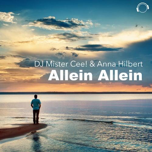 Allein Allein von DJ Mr.Cee