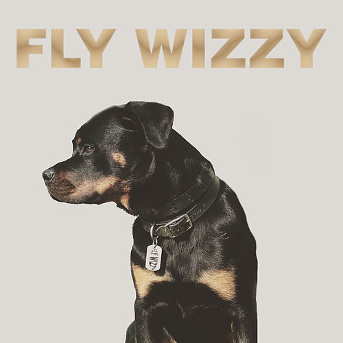 Ima Dog (Radio Edit) by Fly Wizzy