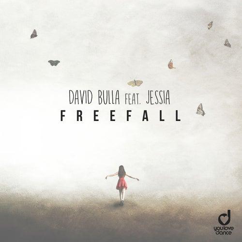 Freefall by David Bulla