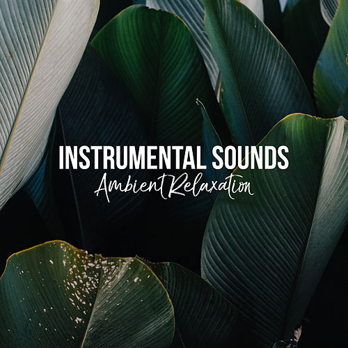 Instrumental Sounds: Ambient Relaxation de Instrumental Relaxation
