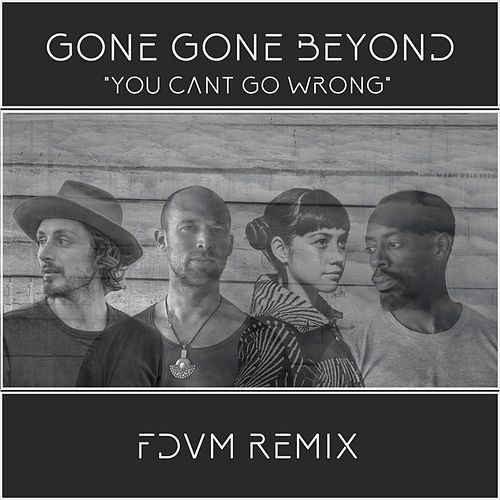 You Can't Go Wrong (Fdvm Remix) by Gone Gone Beyond