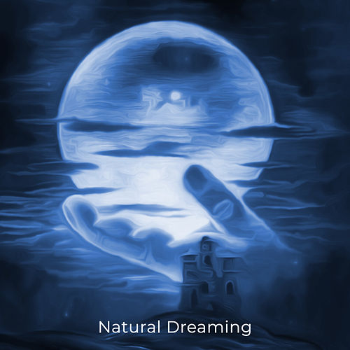 Natural Dreaming – Compilation of 15 Songs to Sleep by Nature Sounds Relaxation: Music for Sleep, Meditation, Massage Therapy, Spa