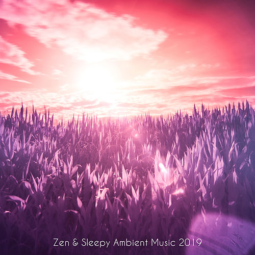Zen and Sleepy Ambient Music Dedicated to Sleep and Meditation at Bedtime by Deep Sleep Meditation