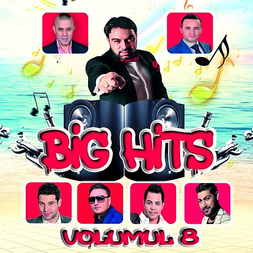 Big Hits, Vol. 8 di Various Artists