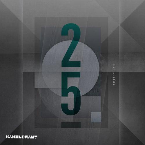 25 Years of Kanzleramt von Various Artists