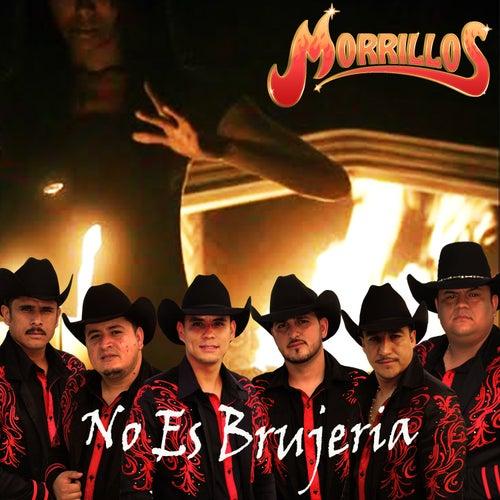 No Es Brujería by Morrillos Del Norte