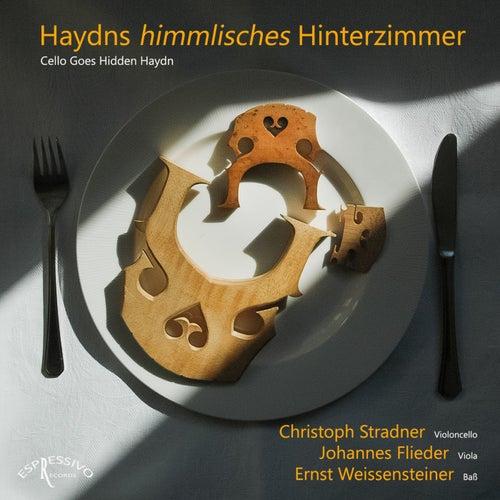 Haydns Himmlisches Hinterzimmer (Cello Goes Hidden Haydn) von Christoph Stradner