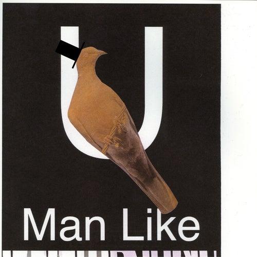 U (Man Like) von Bon Iver