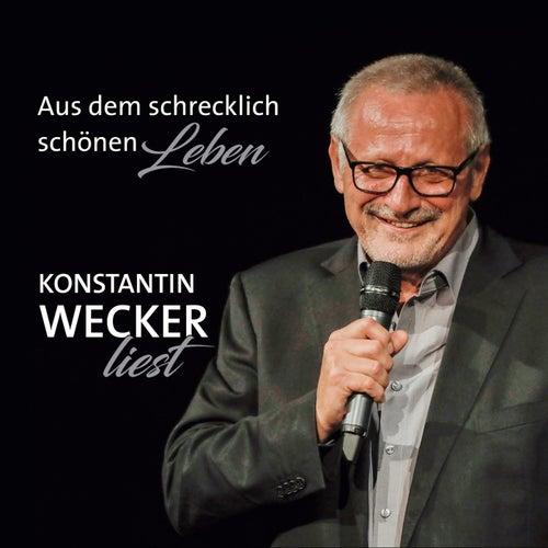 Das schrecklich schöne Leben von Konstantin Wecker