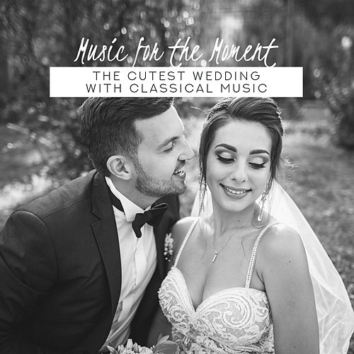 Music for the Moment: The Cutest Wedding with Classical Music von Various Artists