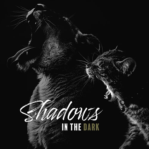 Shadows in the Dark: Acoustic Covers di Various Artists
