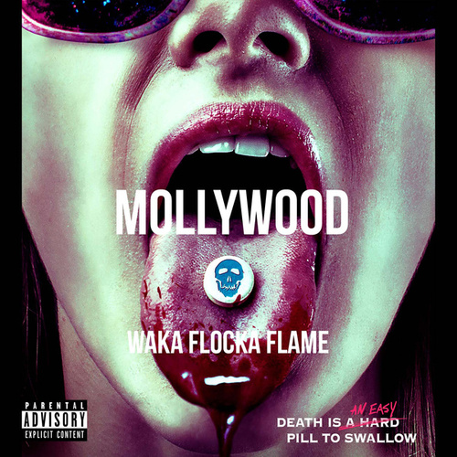 Mollywood de Waka Flocka Flame