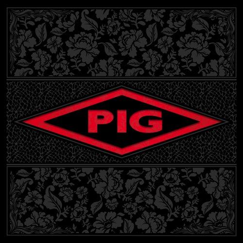 Candy von Pig