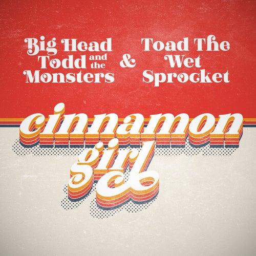 Cinnamon Girl de Big Head Todd And The Monsters