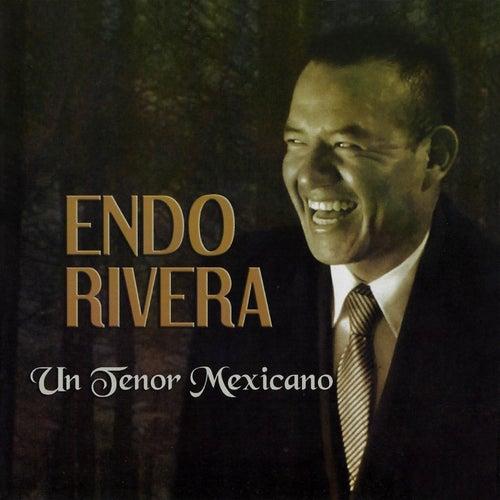Un tenor mexicano von Endo Rivera