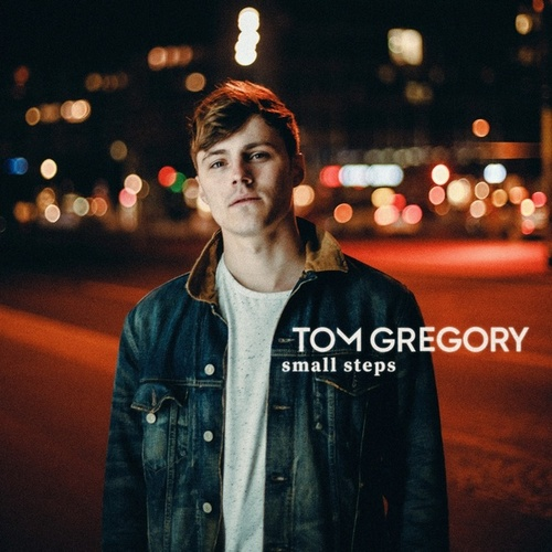 Small Steps by Tom Gregory