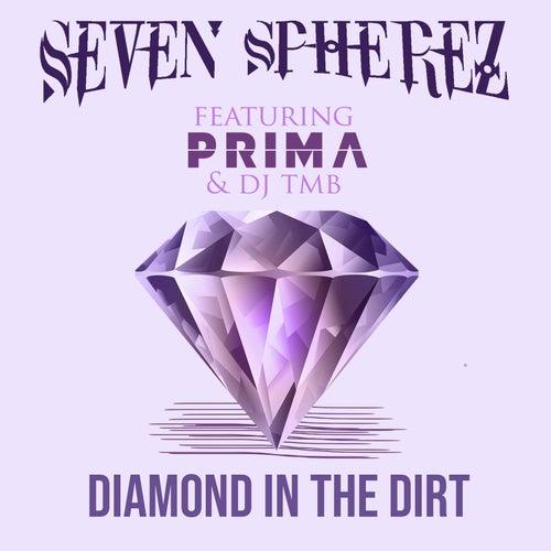 Diamond in the Dirt by Seven Spherez