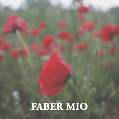 Faber Mio by Cantautore Misterioso