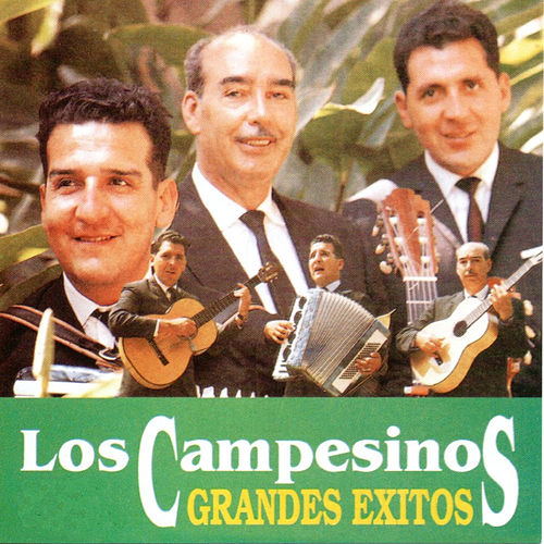 Grandes Exitos by Los Campesinos!
