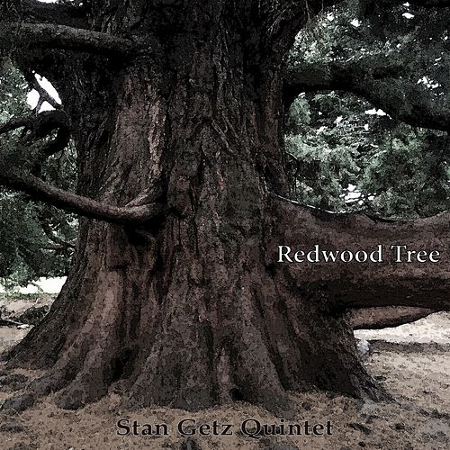 Redwood Tree by Stan Getz