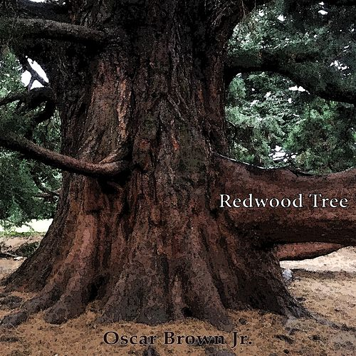 Redwood Tree by Oscar Brown Jr.