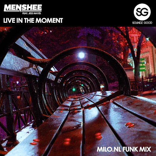Live In The Moment (Milo.nl Funk Mix) by Menshee