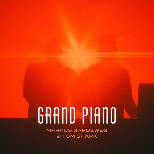 Grand Piano von Markus Gardeweg