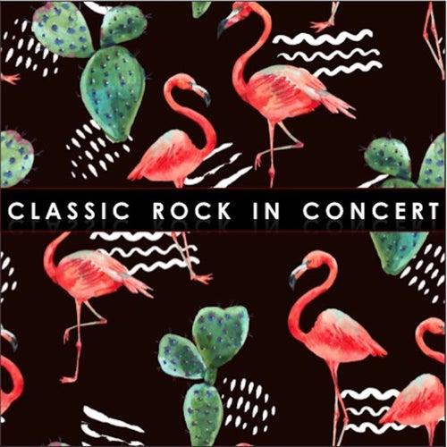 Classic Rock in Concert de Various Artists