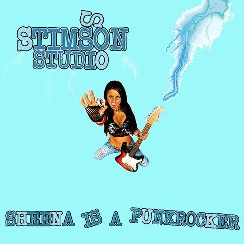 Sheena Is a Punk Rocker von Stimsson Studio