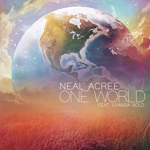 One World (feat. Uyanga Bold) by Neal Acree