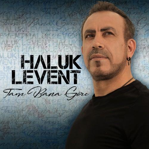 Tam Bana Göre by Haluk Levent